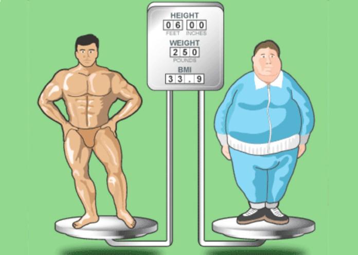 grow fatter