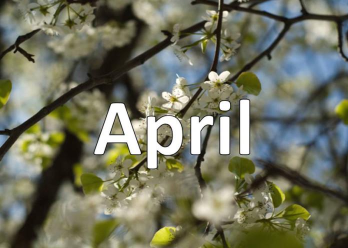 April Baby