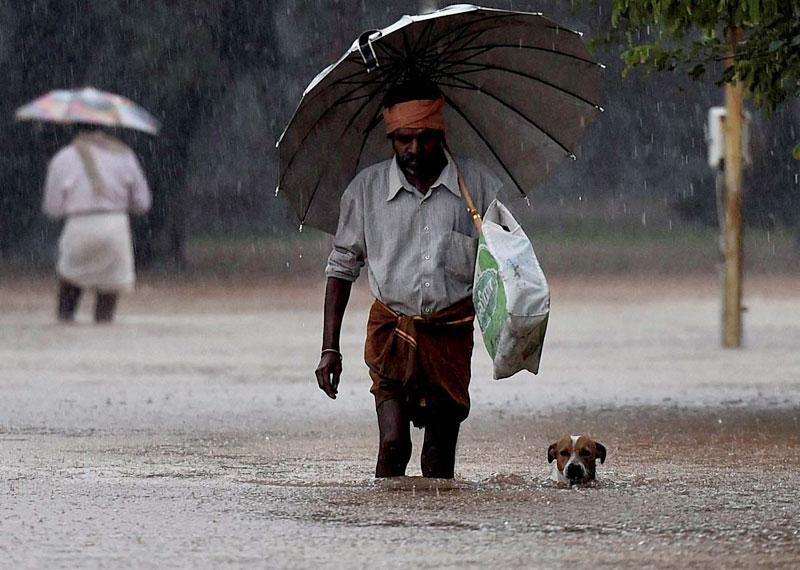 Chennai Survives