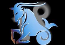 Capricorn Sign