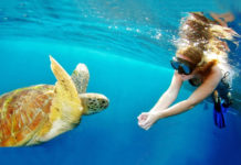 snorkel around the world