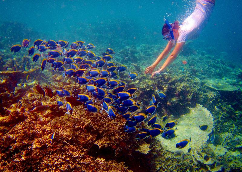 Mahebourg Bay, Mauritius