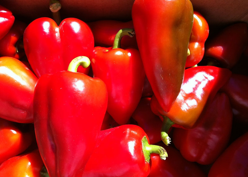 Bell Pepper and Apple