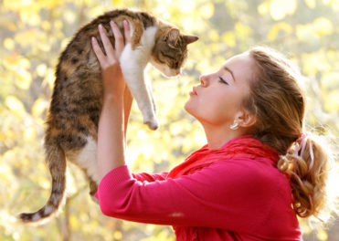 More About Cat Owner Personality