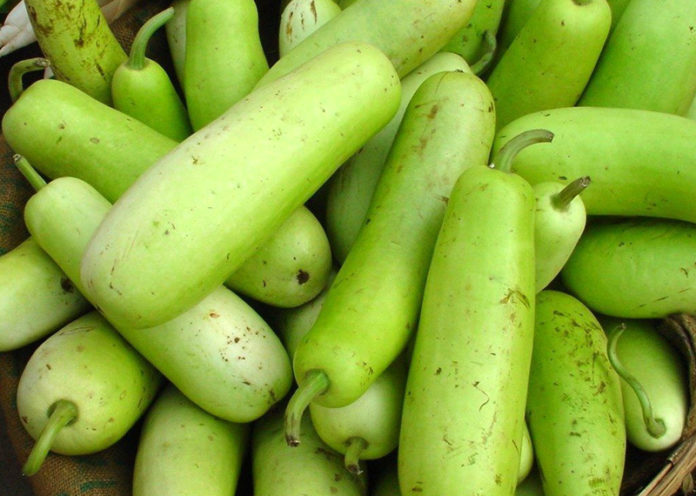 Bottle gourd treatment