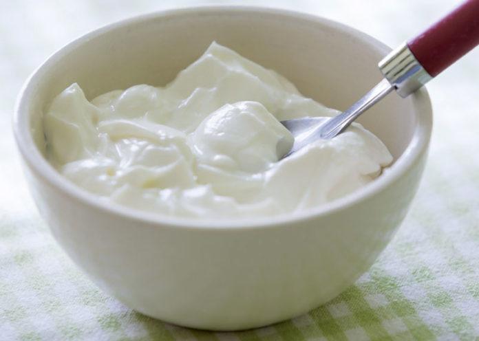 Go Yogi with Yogurt