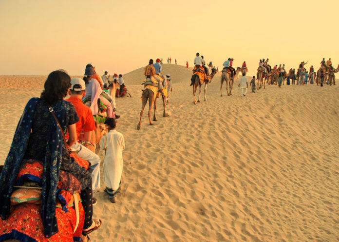 Camels to find love in Jaisalmer