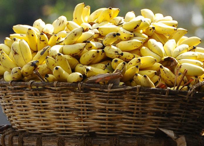 Minions favourite Bananas
