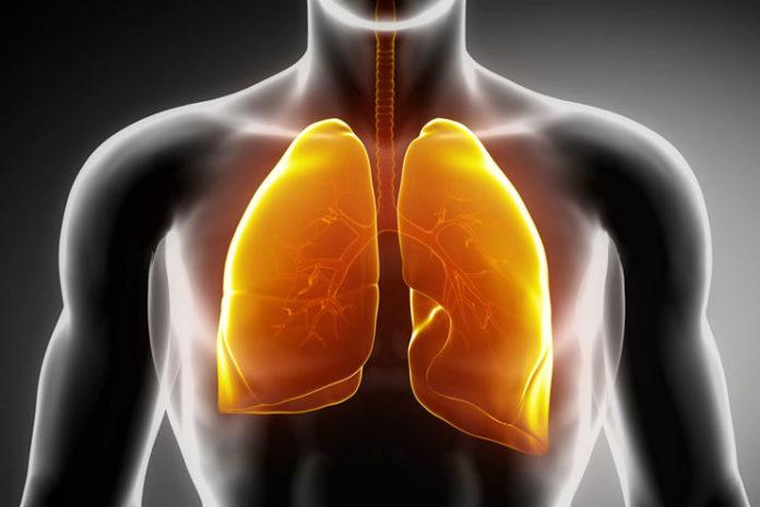 Prevents Respiratory Problems
