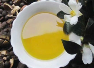Camellia Oil Uses And Benefits