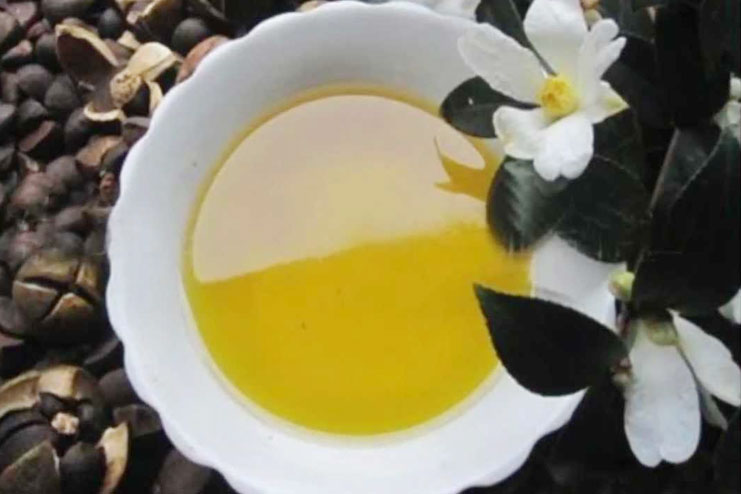 Camellia Oil Uses And Benefits Camellia Oil For Skin Care