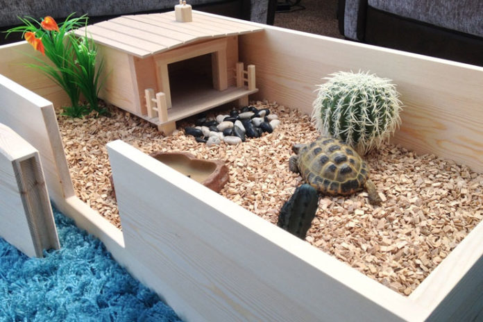 proper habitat
