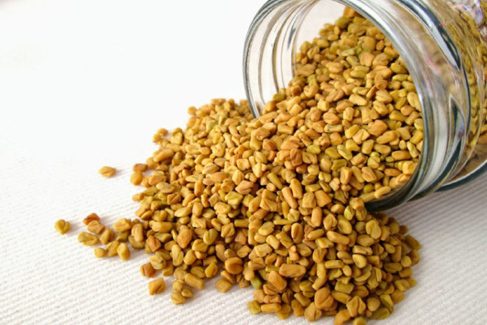 Methi or Fenugreek seeds