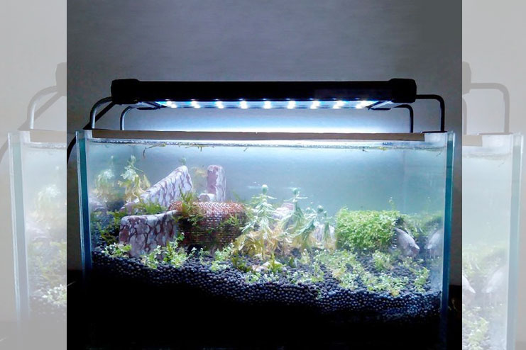 Tank Lid With Light