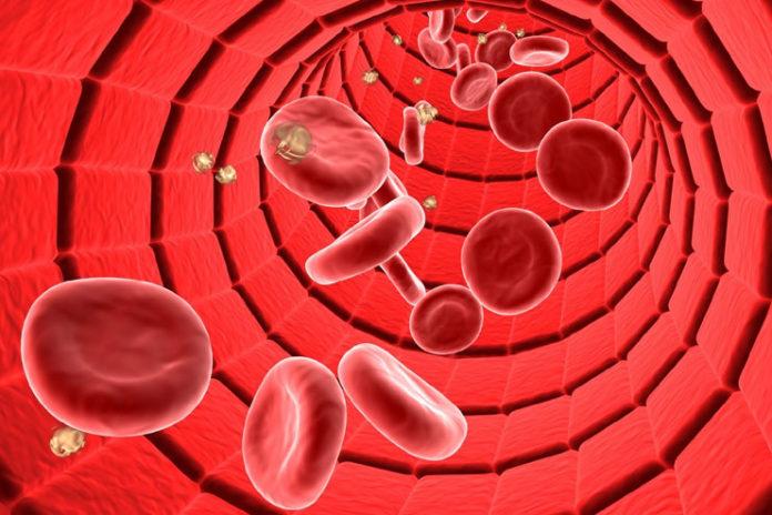 Improves Blood Circulation