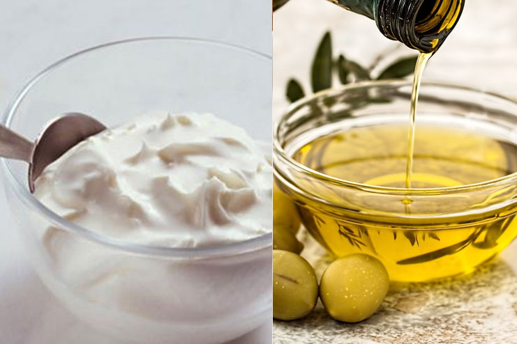 Yogurt And Olive Oil Hair Pack