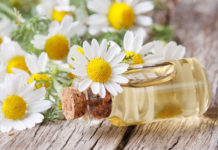 Chamomile Oil For Hair
