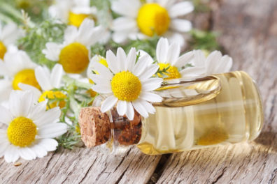 Benefits Of Chamomile Oil For Hair Shine And Softness