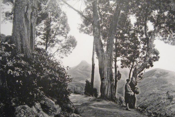 History Of Kodaikanal