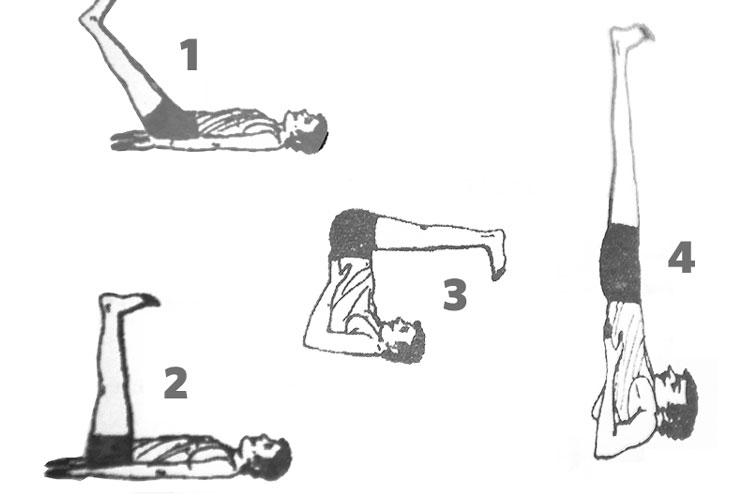 Shoulder Stand Pose Or Sarvangasana