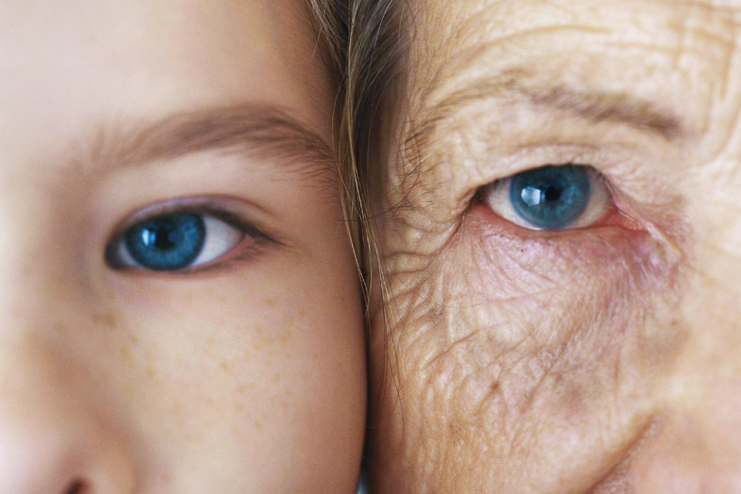 Reverses Aging