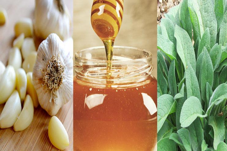 Garlic, Honey And Comfrey
