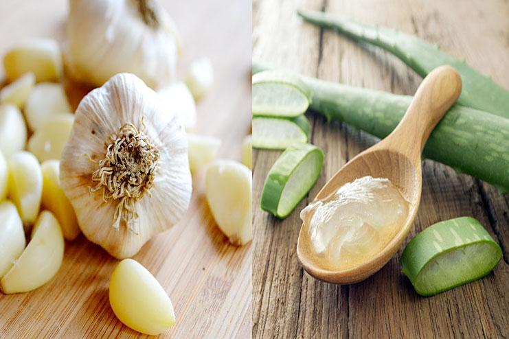 Garlic And Aloe Vera