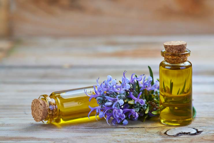 Rosemary Hot Oil Treatment