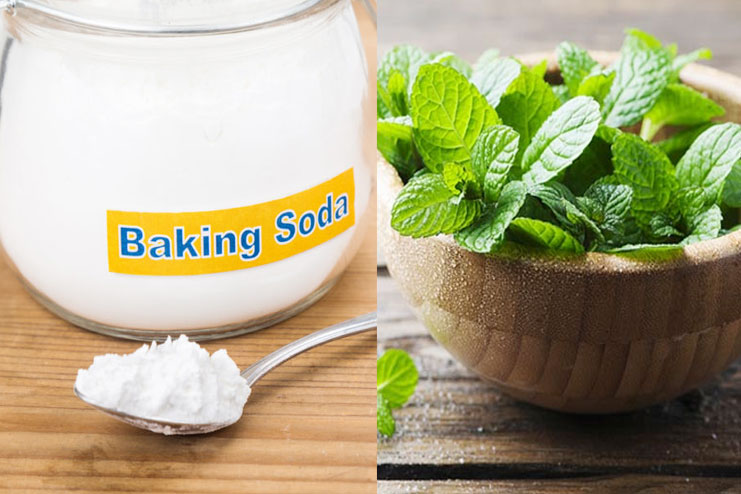 Baking Soda with Peppermint Leaves