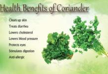 benefits of coriander