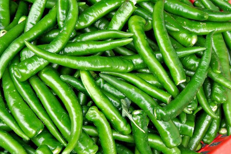 Green Chilly nutrition facts