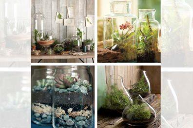 Some wonderful Indoor herb garden ideas