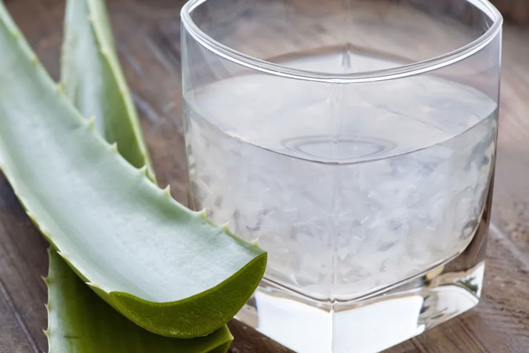 Recipe For Aloe Vera Juice