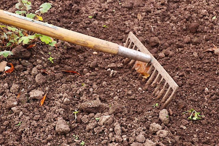Perfect Soil Preparation