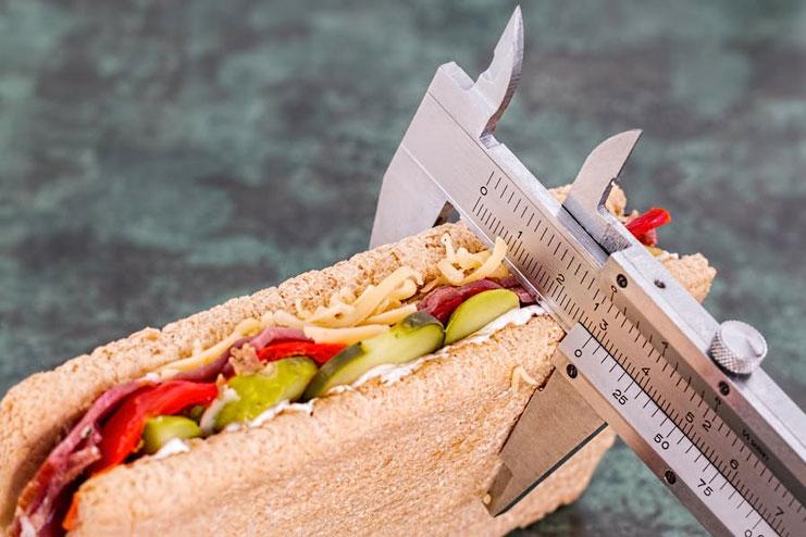 Protein Burns Calories