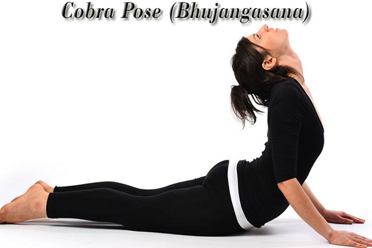Cobra Pose