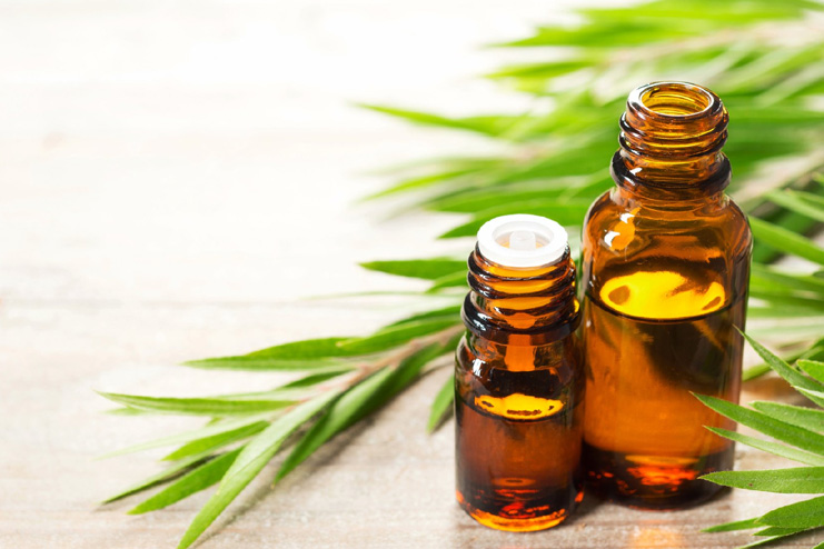 Treat with tea tree oil