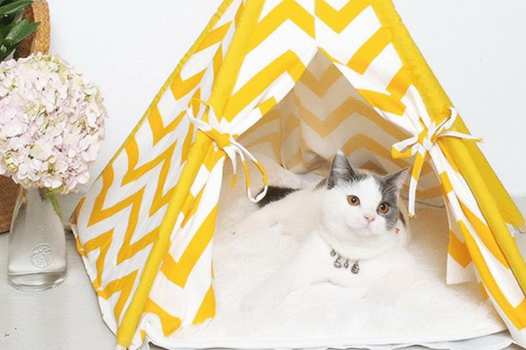Tent Cat Cave