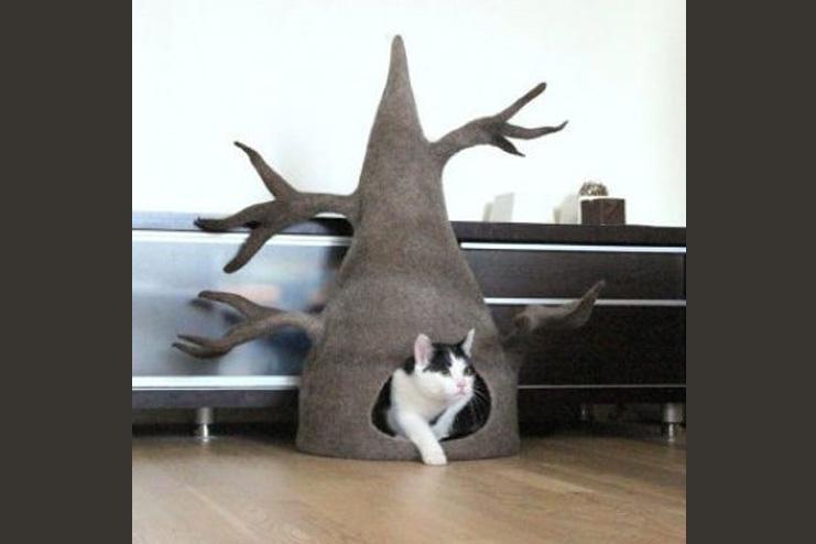 Tree cat cave